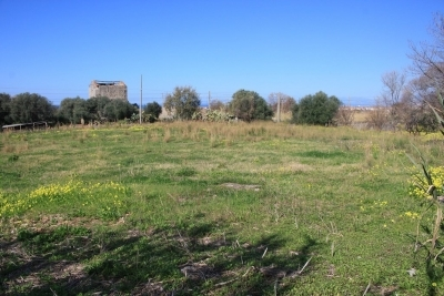 Terreno edificabile indice 1,50 e terreno agricolo pianeggiante
